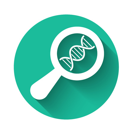 White DNA research, search icon isolated with long shadow. Magnifying glass and dna chain. Genetic engineering, cloning, paternity testing. Green circle button. Vector Illustration