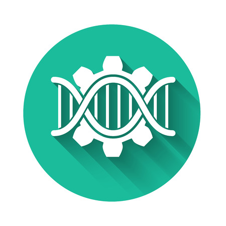 White Genetic engineering icon isolated with long shadow. DNA analysis, genetics testing, cloning, paternity testing. Green circle button. Vector Illustration