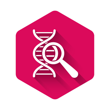 White DNA research, search icon isolated with long shadow. Magnifying glass and dna chain. Genetic engineering, cloning, paternity testing. Pink hexagon button. Vector Illustration