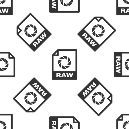 Grey RAW File Document Icon  Download Raw Button Icon Isolated
