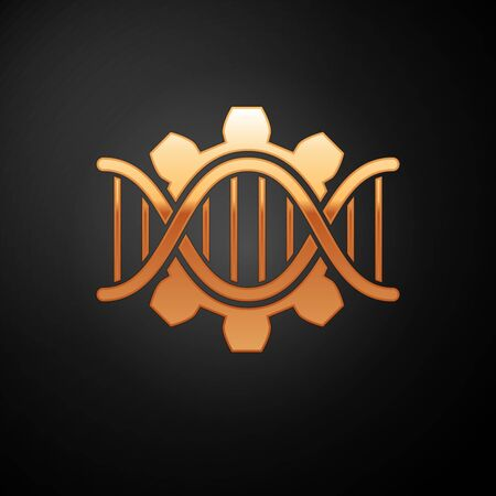 Gold Genetic engineering icon isolated on black background. DNA analysis, genetics testing, cloning, paternity testing. Vector Illustration