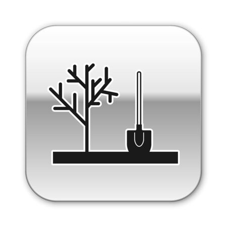 Black Planting a tree in the ground icon isolated on white background. Gardening, agriculture, caring for environment. Silver square button. Vector Illustration