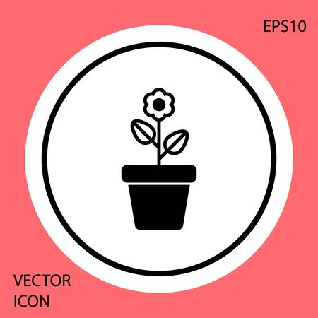 Black Flower in pot icon isolated on red background. Plant growing in a pot. Potted plant sign. White circle button. Vector Illustration