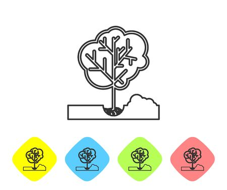 Grey line Planting a tree in the ground icon isolated on white background. Gardening, agriculture, caring for environment. Set icon in color rhombus buttons. Vector Illustration Ilustrace