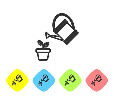 Grey line Watering can sprays water drops above plant in pot icon isolated on white background. Irrigation symbol. Set icon in color rhombus buttons. Vector Illustration Ilustração