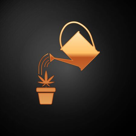 Gold Watering can sprays water drops above marijuana or cannabis plant in pot icon isolated on black background. Marijuana growing concept. Vector Illustration Иллюстрация