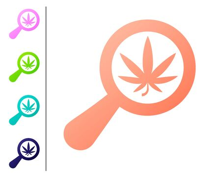 Coral Magnifying glass and medical marijuana or cannabis leaf icon isolated on white background. Hemp symbol. Set color icons. Vector Illustration
