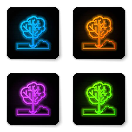 Glowing neon Planting a tree in the ground icon isolated on white background. Gardening, agriculture, caring for environment. Black square button. Vector Illustration