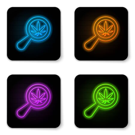 Glowing neon Magnifying glass and medical marijuana or cannabis leaf icon isolated on white background. Hemp symbol. Black square button. Vector Illustration