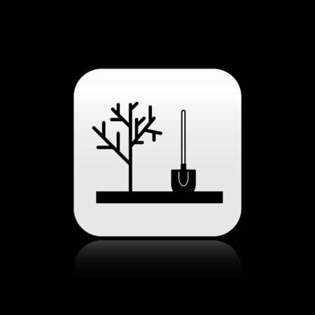 Black Planting a tree in the ground icon isolated on black background. Gardening, agriculture, caring for environment. Silver square button. Vector Illustration