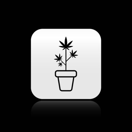 Black Medical marijuana or cannabis plant in pot icon isolated on black background. Marijuana growing concept. Hemp potted plant. Silver square button. Vector Illustration