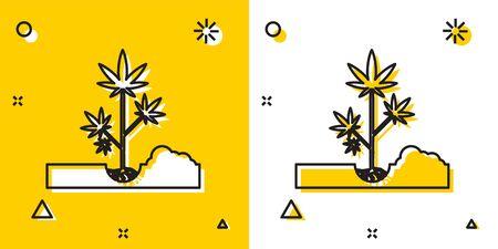 Black Planting marijuana or cannabis plant in the ground icon isolated on yellow and white background. Marijuana growing concept. Hemp symbol. Random dynamic shapes. Vector Illustration