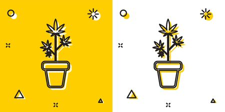 Black Medical marijuana or cannabis plant in pot icon isolated on yellow and white background. Marijuana growing concept. Hemp potted plant. Random dynamic shapes. Vector Illustration Illustration