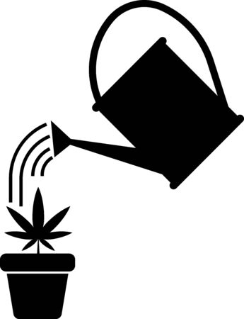 Black Watering can sprays water drops above marijuana or cannabis plant in pot icon isolated on white background. Marijuana growing concept. Vector Illustration