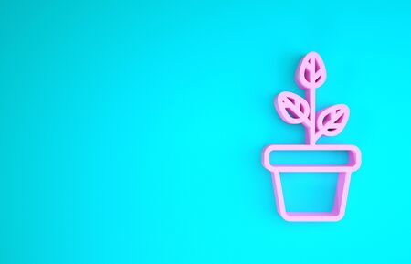 Pink Flowers in pot icon isolated on blue background. Plant growing in a pot. Potted plant sign. Minimalism concept. 3d illustration 3D render