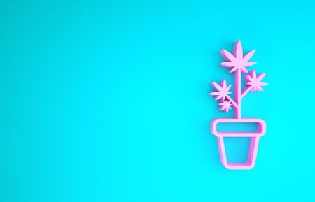 Pink Medical marijuana or cannabis plant in pot icon isolated on blue background. Marijuana growing concept. Hemp potted plant. Minimalism concept. 3d illustration 3D render Zdjęcie Seryjne
