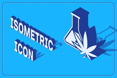Isometric Chemical test tube with marijuana or cannabis leaf icon isolated on blue background. Research concept. Laboratory CBD oil concept. Vector Illustration