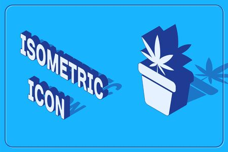 Isometric Medical marijuana or cannabis plant in pot icon isolated on blue background. Marijuana growing concept. Hemp potted plant. Vector Illustration Stock Illustratie