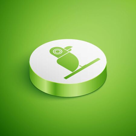 Isometric Pirate parrot icon isolated on green background. White circle button. Vector Illustration