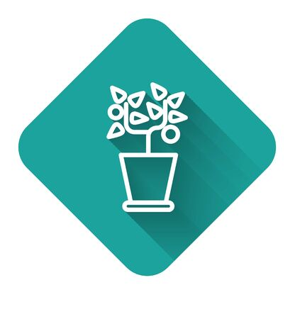 White line Plant in pot icon isolated with long shadow. Plant growing in a pot. Potted plant sign. Green square button. Vector Illustration