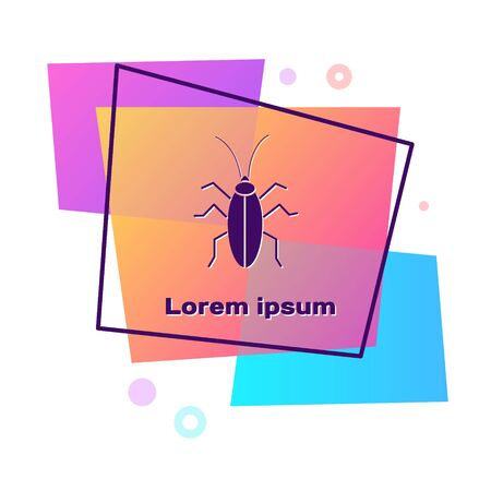 Purple Cockroach icon isolated on white background. Color rectangle button. Vector Illustration