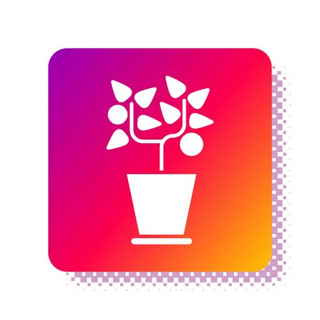 White Plant in pot icon isolated on white background. Plant growing in a pot. Potted plant sign. Square color button. Vector Illustration