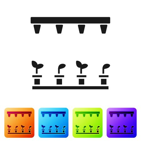 Black Automatic irrigation sprinklers icon isolated on white background. Watering equipment. Garden element. Spray gun icon. Set icons in color square buttons. Vector Illustration
