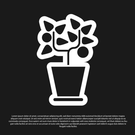 Black Plant in pot icon isolated on black background. Plant growing in a pot. Potted plant sign. Vector Illustration Archivio Fotografico - 138200640