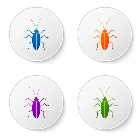 Color Cockroach icon isolated on white background. Set icons in circle buttons. Vector Illustration