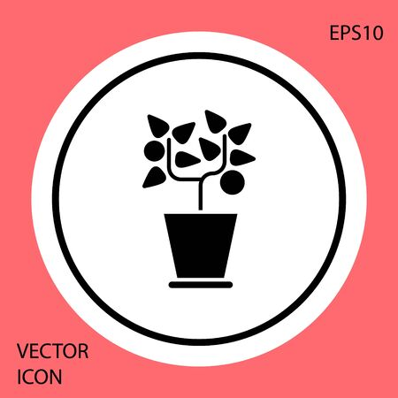 Black Plant in pot icon isolated on red background. Plant growing in a pot. Potted plant sign. White circle button. Vector Illustration