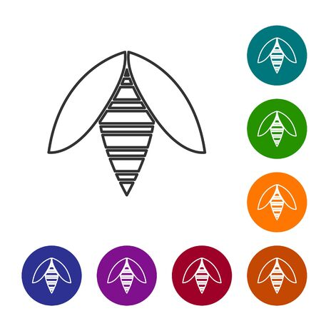 Grey line Bee icon isolated on white background. Sweet natural food. Honeybee or apis with wings symbol. Flying insect. Set icons in color circle buttons. Vector Illustration Ilustrace