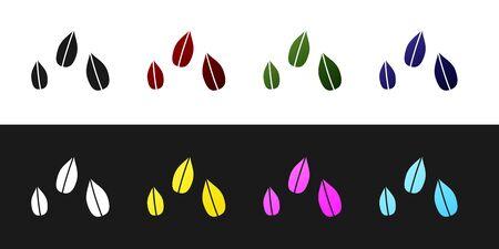 Set Sesame seeds icon isolated on black and white background. Vector Illustration 向量圖像