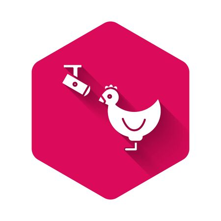 White Chicken farm and wireless Controlling CCTV security camera icon isolated with long shadow. Pink hexagon button. Vector Illustration