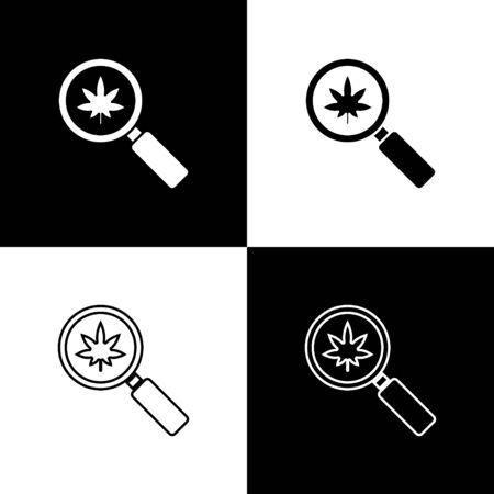 Set Magnifying glass and medical marijuana or cannabis leaf icon isolated on black and white background. Hemp symbol. Vector Illustration