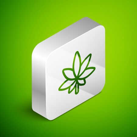Isometric line Medical marijuana or cannabis leaf icon isolated on green background. Hemp symbol. Silver square button. Vector Illustration. Иллюстрация