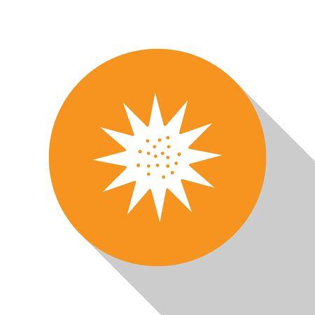 White Sea urchin icon isolated on white background. Orange circle button. Vector.