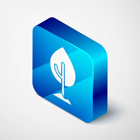 Isometric Tree icon isolated on grey background. Forest symbol. Blue square button. Vector Banco de Imagens - 150292647