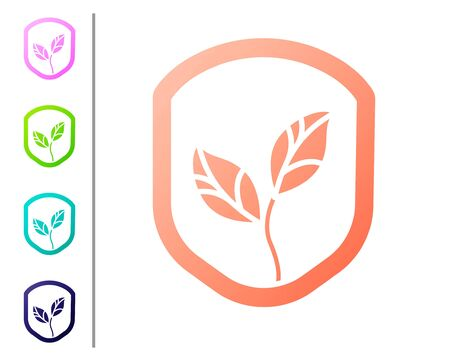 Coral Shield with leaf icon isolated on white background. Eco-friendly security shield with leaf. Set color icons. Vector 向量圖像