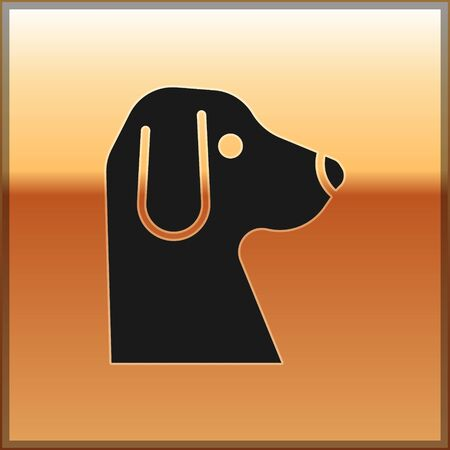 Black Dog icon isolated on gold background. Vector.