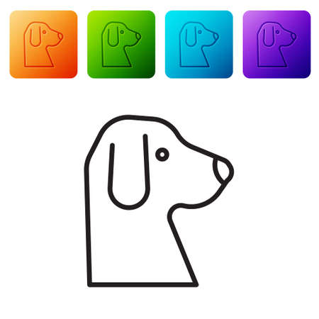 Black line Dog icon isolated on white background. Set icons in color square buttons. Vector.