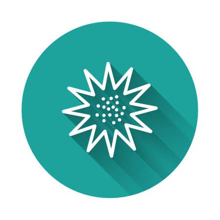 White line Sea urchin icon isolated with long shadow. Green circle button. Vector..