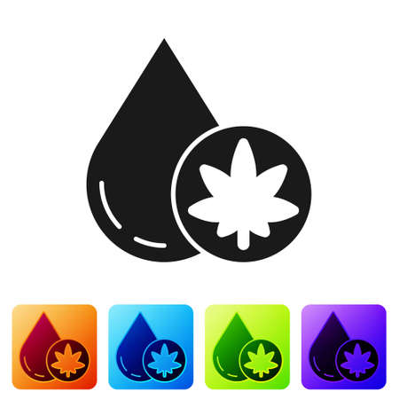 Black Medical marijuana or cannabis leaf olive oil drop icon isolated on white background. Cannabis extract. Hemp symbol. Set icons in color square buttons. Vector Illustration. Иллюстрация
