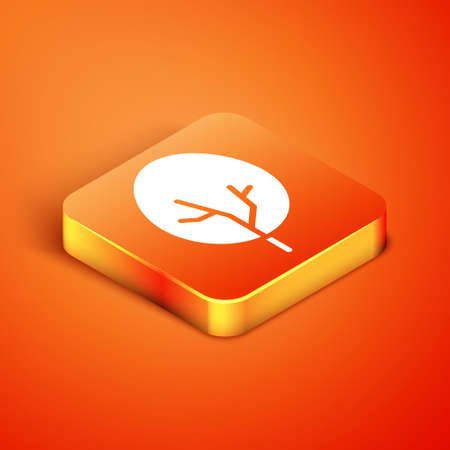 Isometric Tree icon isolated on orange background. Forest symbol. Vector.