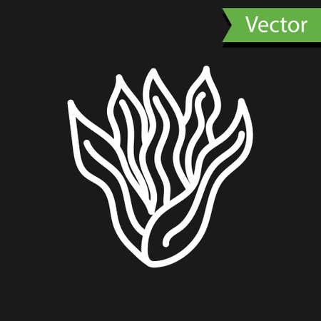 White line Seaweed icon isolated on black background. Underwater seaweed spirulina, aquatic marine algae plant. Vegan and vegetarian food. Vector..