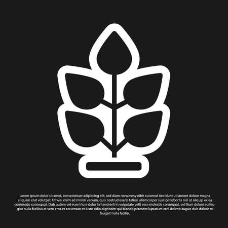 Black Plant icon isolated on black background. Seed and seedling. Leaves sign. Leaf nature. Vector