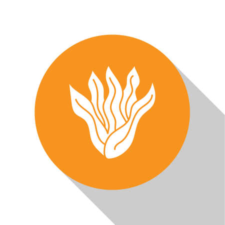 White Seaweed icon isolated on white background. Underwater seaweed spirulina, aquatic marine algae plant. Vegan and vegetarian food. Orange circle button. Vector.