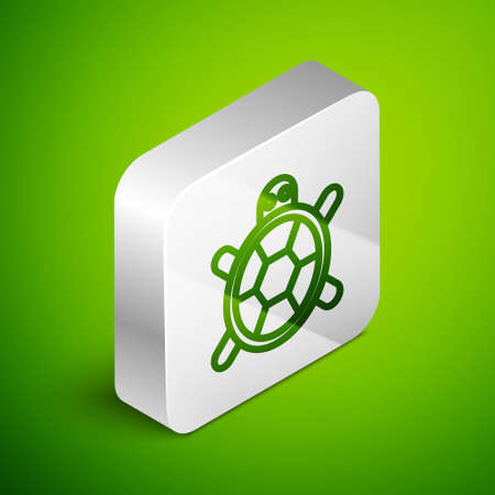 Isometric line Turtle icon isolated on green background. Silver square button. Vector.