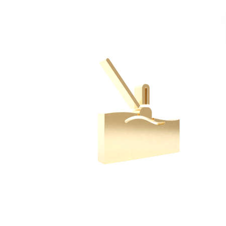 Gold Fishing float in water icon isolated on white background. Fishing tackle. 3d illustration 3D render