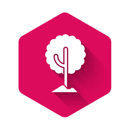 White Tree icon isolated with long shadow. Forest symbol. Pink hexagon button. Vector