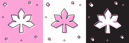 Set Chestnut leaf icon isolated on pink and white, black background. Vector